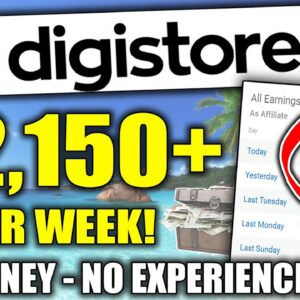How To Promote Digistore24 Products Using FEE Traffic as a Beginner (Complete Training)